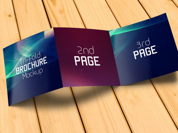 title-2-3-pages