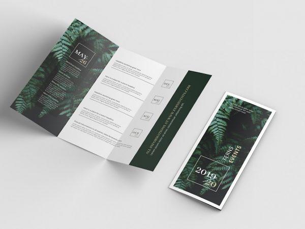 Мокап брошюры
