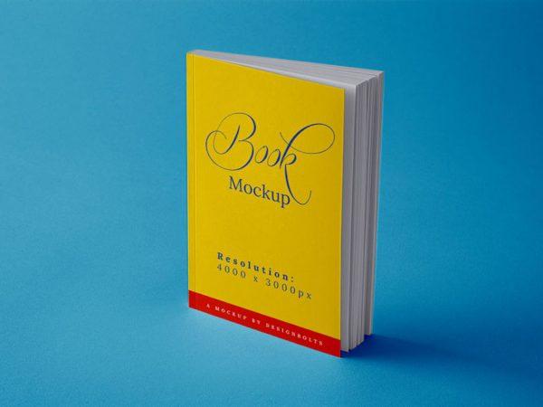 Мокап книги
