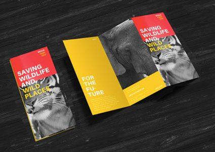 Мокап брошюры  Z-Fold